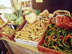 fruits et legumes cueillette la ferme du vinage roncq