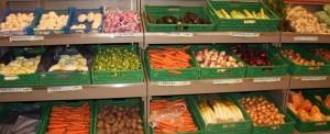 Légumes producteurs locaux Au panier vert