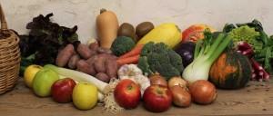 fruits-et-legumes-producteurs-locaux-le-court-circuit